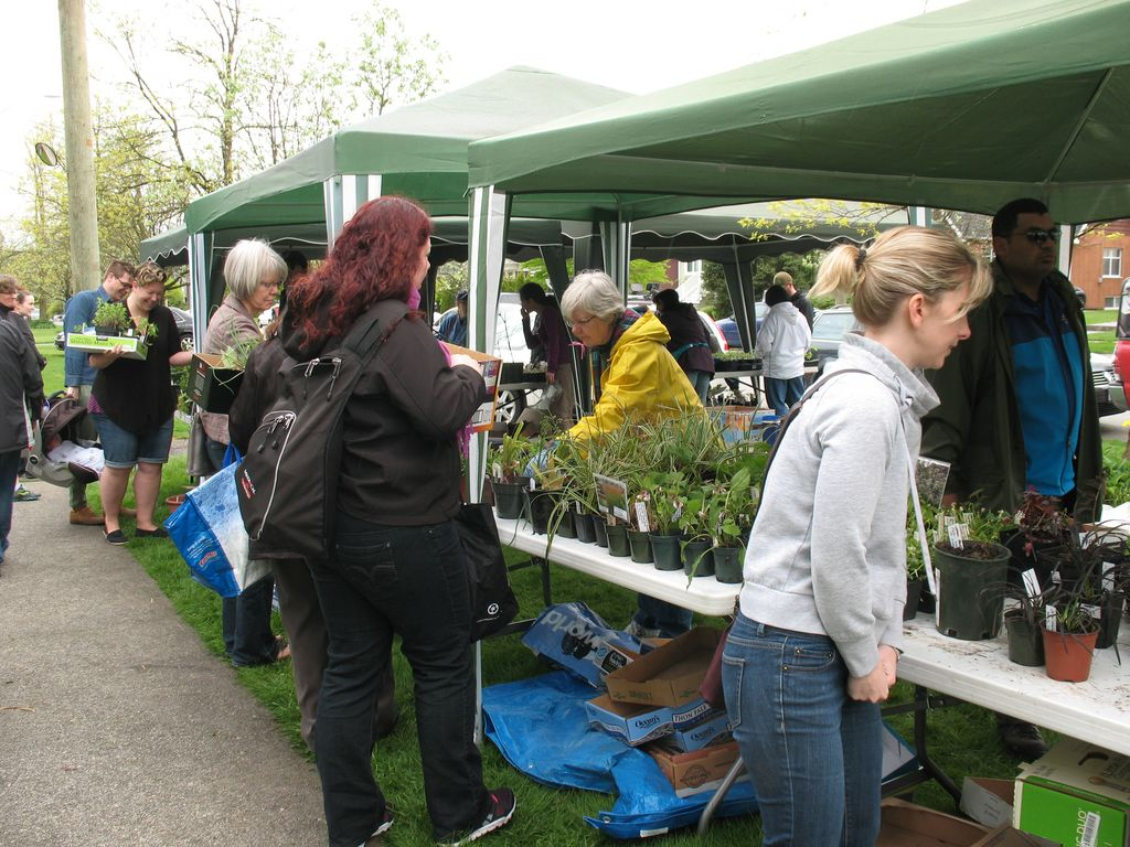 New Westminster Horticultural Society Plant Sale